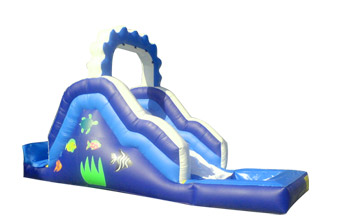 Medium Water Slide